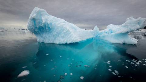 【熱話】宣布南冰洋名列五大洋之一--國家地理學會:它有自己的獨立生態
