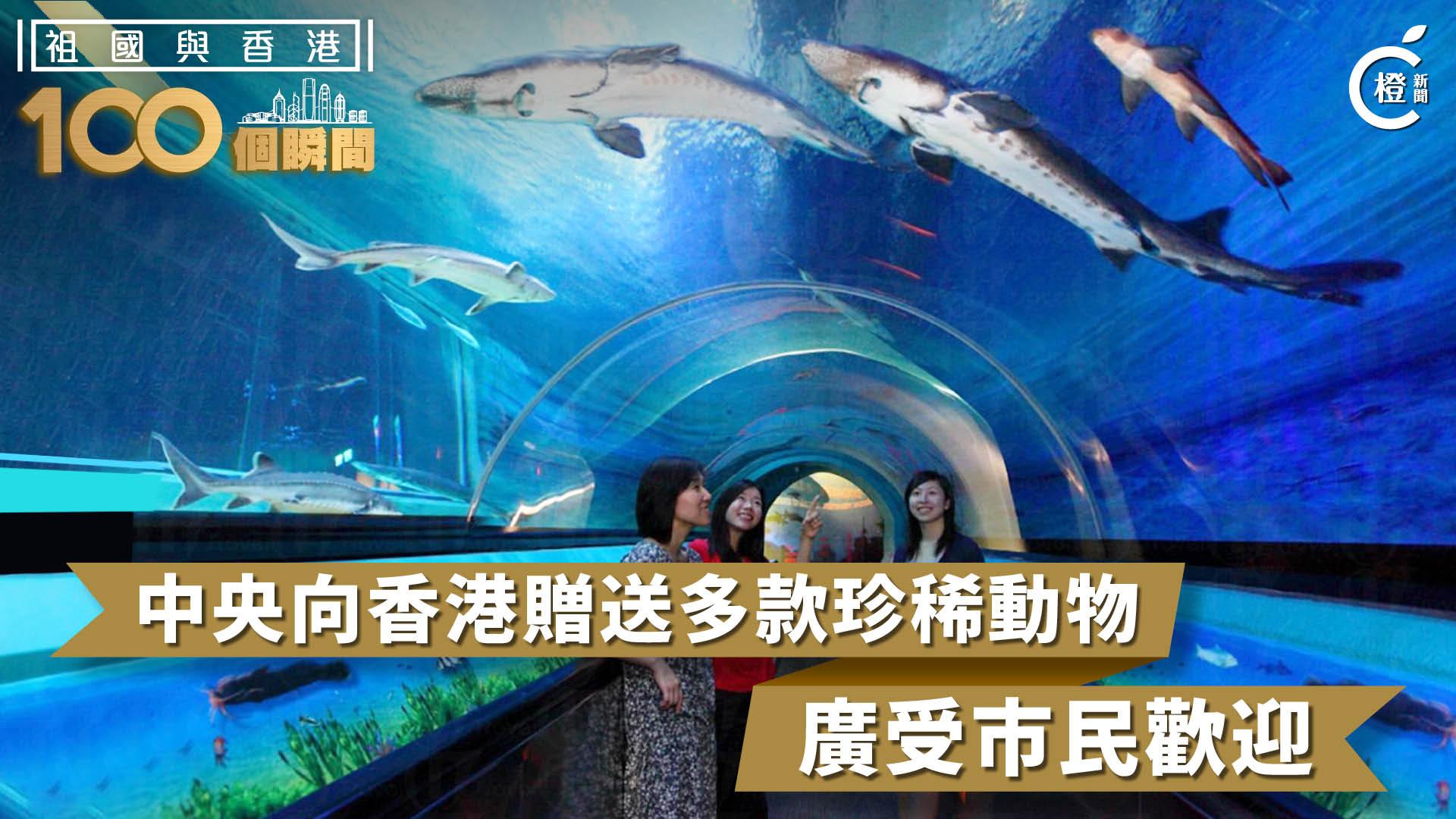【祖國與香港100個瞬間】中央向香港贈送多款珍稀動物 廣受市民歡迎