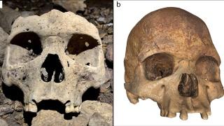 非洲中部的洞穴發現500年前人類整容的證據?28具遺骸均缺少了四顆門牙
