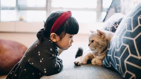 【寵物伴成長】家有幼兒的飼養寵物小提示