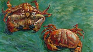 【陸小淑專欄】梵高的螃蟹