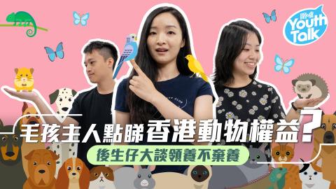 【Youth-Talk】毛孩主人點睇香港動物權益?後生仔大談領養不棄養